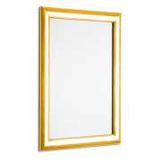 Polished gold snap frame